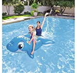 Aufblasbare Pool Meer Aufsitzspielzeug Delfin 157x 89cm bes044