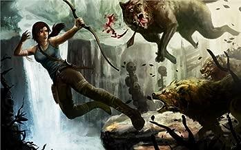 Tomorrow sunny 24X36 INCH / Game Lara Croft Tomb Raider Lara Croft Tomb Raider art girl bow wolves