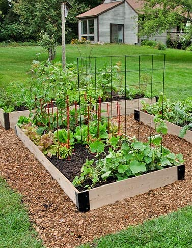 Raised Garden Bed 3 x 6 Box Vegetable Planter trust Animer and price revision O for