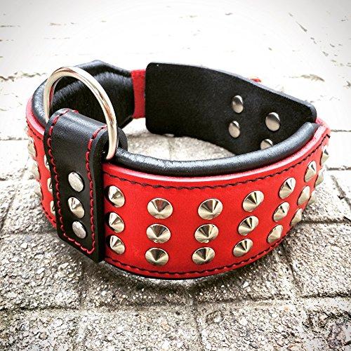 Bestia Star Hundehalsband mit Nieten und Innenpolsterung 6,5 cm Breit