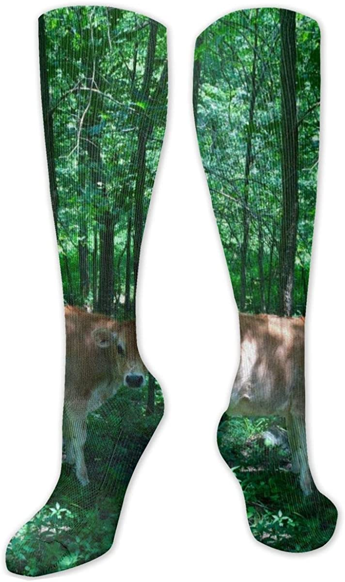 Cattle In Forest Knee High Socks Leg Warmer Dresses Long Boot Stockings For Womens Cosplay Daily Wear