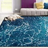 Naanle Ocean Beach Theme Area Rug 5'x7', Sea Waves Polyester Area Rug Mat for Living Dining Dorm Room Bedroom Home Decorative