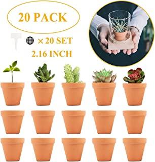 2 Inch Terracotta Pot Clay Pots Small Clay Ceramic Pottery Planter Cactus Flower Pots Succulent Pot Drainage Hole-Great for Plants,Crafts,Wedding Favor (20 Pack)