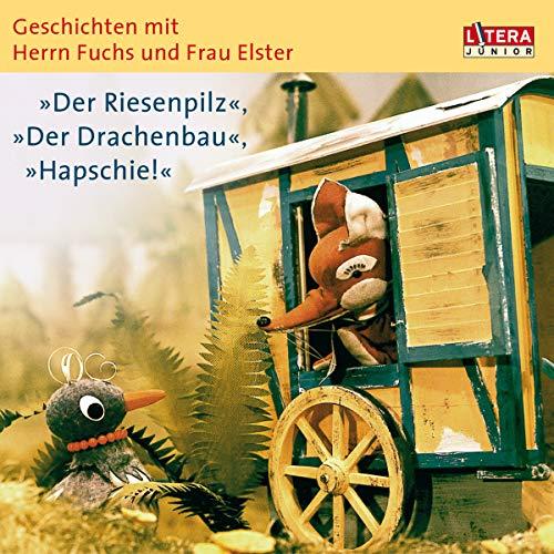Der Riesenpilz - Der Drachenbau - Hapschie! Titelbild