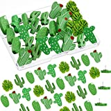 Wooden Push Pins Cactus Palm Leaf Thumb Tack Decorative Cute Pushpins for Photos Wall, Maps, Bulletin Board or Cork Boards (30 Pieces)