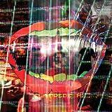 Songtexte von Animal Collective - Centipede Hz