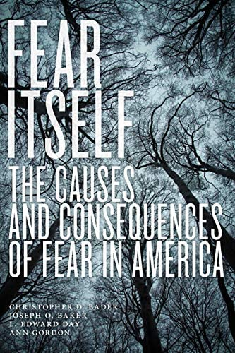 Fear Itself The Causes and Consequences of Fear in America product image