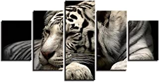 ZFKOB 5 Canvas Home Decoration Art Painting Canvas Paintings Home Decor HD Prints Posters 5 Pieces Animals White Tiger Pictures for Living Room Wall Art