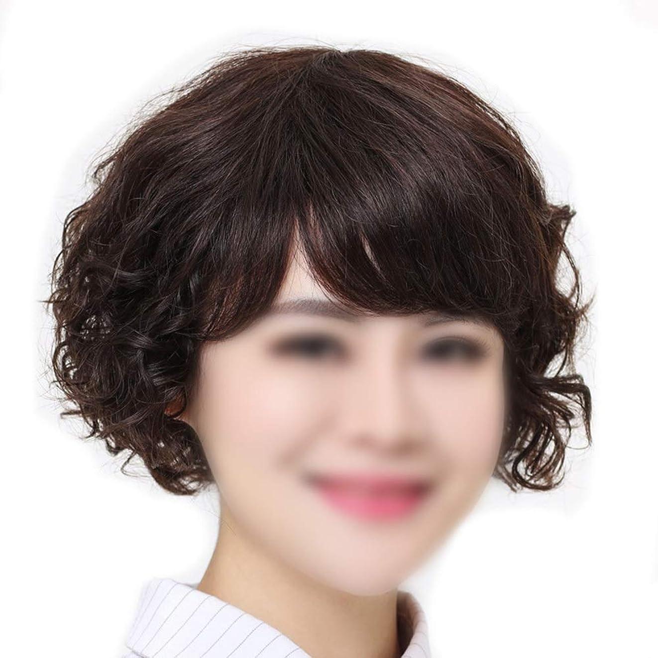 自体種類割合Yrattary 女性のためのナチュラルショートヘアエクステンションマイクロ波リアルヘアウィッグウィッグ/ウィッグパーティーかつら (Color : Dark brown, サイズ : Mechanism)
