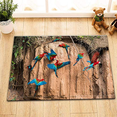 SRJ2018 Una bandada de alfombras con Estampado de pájaros en Las montañas,duraderas,Antideslizantes,absorbentes y Suaves alfombras de Franela para cocinas y baños,Lavables a máquina