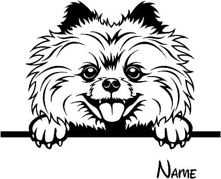 STRASSE /« HAUSNUMMER NAME mit POMERANIAN SPITZ /» als SCHIEFERTAFEL individuell gefertigt Schieferschild Hund Zwergspitz