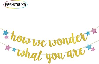 How We Wonder What Your Are Glitter Banner Pre-strung for Twinkle Twinkle Little Star Gender Reveal Party Decorations