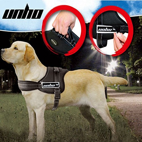 Different Kinds of Dog Harnesses
