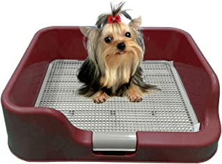 [DogCharge] Indoor Dog Potty Tray – with Protection Wall Every Side for No Leak, Spill, Accident - Keep Paws Dry and Floor...