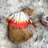 Anime Demon Slayer Pet Costume Kamado Nezuko Cosplay Kimono Haori Bathrobe Puppy Cat Small Dog Animal Cape Cloak Suit (Rengoku Kyoujurou, Small)
