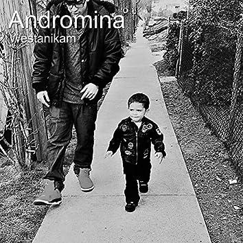 Andromina