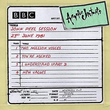John Peel Session 23rd June 1981