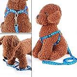Welpen Blei Haustier kleiner Hund Nylon Drucken Halsband Gurt Leine Set Neck Einstellbare Farbe zuf?llig - 4