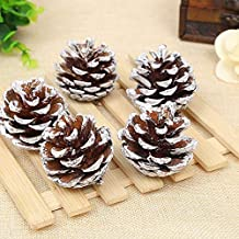 Dyed White Pine Cones, Suitable for Christmas Decoration DIY Production of Bulk Crafts (1.96-2.36 inches(12pcs))