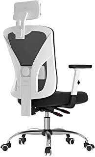 Hbada Ergonomic Office Desk Chair with Adjustable Armrest, Lumbar Support, Headrest and Breathable Skin-Friendly Mesh, White