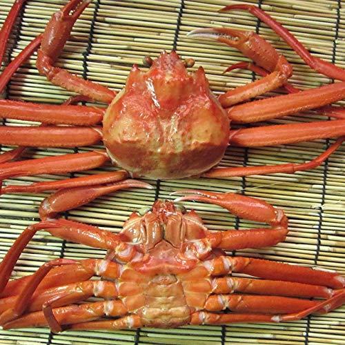 名人の「浜茹で蟹M-6尾」...紅ずわい蟹A級品 1.8~2.4kg