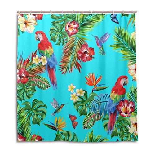 MyDaily Duschvorhang Papagei Kolibri, 167,6 x 182,9 cm, schimmelresistent und wasserdichte Polyester-Dekoration Badezimmer Vorhang