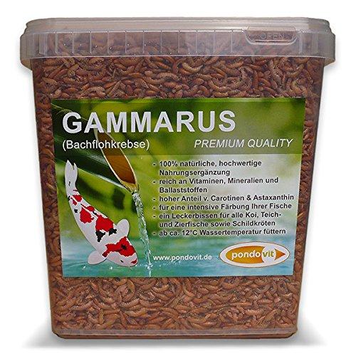 pondovit Gammarus (Bachflohkrebse - Premiumsnack - Koi Leckerbissen, 5 l