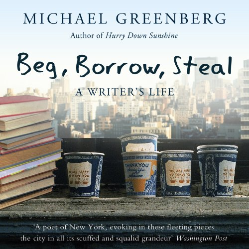 Beg, Borrow, Steal audiobook cover art