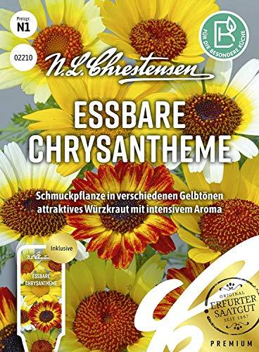 Essbare Chrysanthemen-Samen Würzkraut einjährig