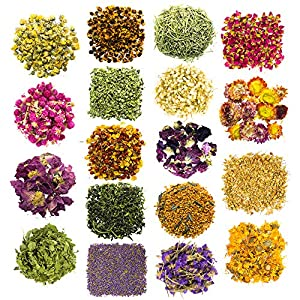 Dried Flowers and Herbs for Soap Making - 18 Varieties Rose Buds Jasmine Lavender Dry Flower Petals - Lip Gloss Witchcraft Supplies Resin Jewelry Essential Oils for Candle Crafts Nail Art Bath Bombs