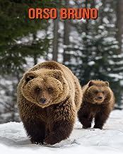 Orso bruno: Foto stupende e fatti divertenti Libro sui Orso bruno per bambini (Italian Edition)