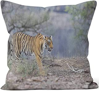 Nine City Wild Bengal Tiger Throw Pillow Cushion Cover,HD Printing Decorative Square Accent Pillow Case,36