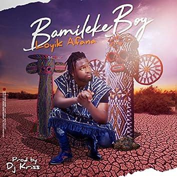 Bamiléké boy
