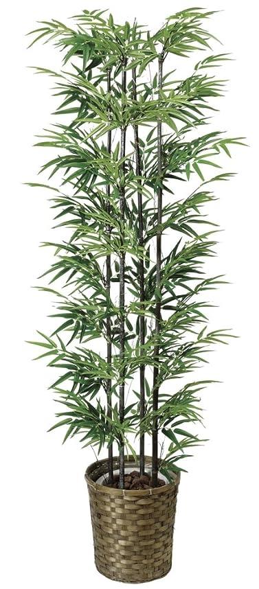 年金パラシュート一口光触媒 人工観葉植物 光の楽園 黒竹 1.6m 404A300