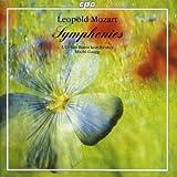 Symphony in G Major, Eisen G16, 'Neue Lambacher': II. Andante un poco - Allegretto