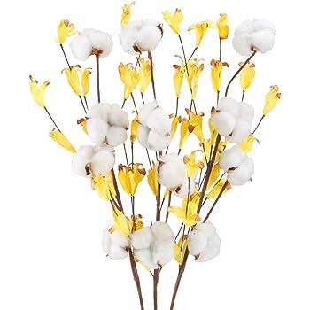 HUAESIN 3pcs Ramo de Flores Secas Algodon Naturales Blancas Rama Algodon Artificial Flor con Hoja Eucalipto Amarillo Flor Seca Algodon Decoracion para Jarrones Mesa Boda Fiesta Maceta Hogar DIY: Amazon.es: Hogar