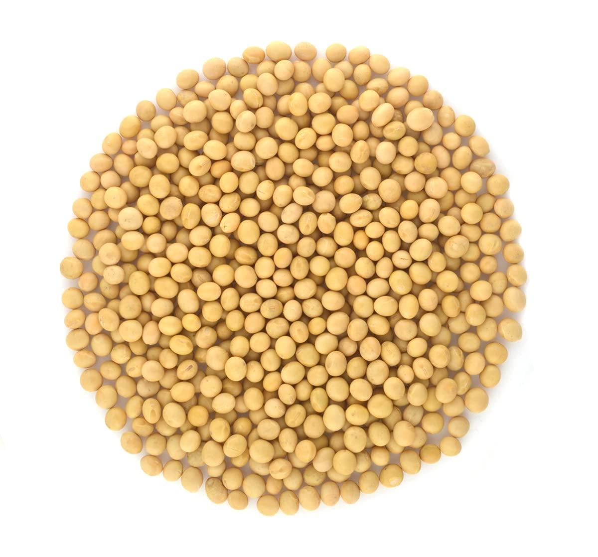 Organic Soy Beans- Protein rich Max 48% OFF Detroit Mall Non-GMO Vegan 10LB Bulk Raw