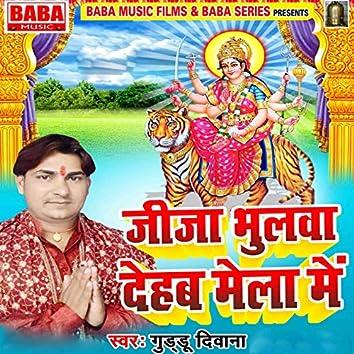 Jija Bhulawa Dehab Mela Mein
