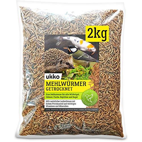 Ukko Mehlwürmer getrocknet 2kg, optimales Zusatz Futter für Reptilien, Fische, Vögel & Co.