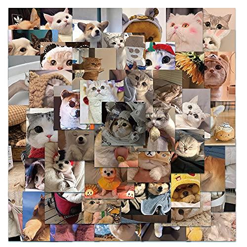 BUCUO Lindo Lindo Mascota Gatos y Perros Equipaje Maleta portátil monopatín Creativo Graffiti Pegatinas Impermeables 48 Uds