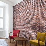 apalis pintado papel pintado de ladrillo piedra Amsterdam Papel pintado fotográfico...