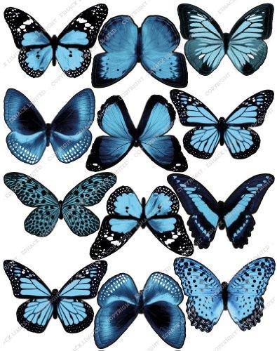 Cakeshop 12 x Vorgeschnittene Hellblau Essbare Schmetterlingskuchen Topper (Tortenaufleger, Bedruckte Oblaten, Oblatenaufleger)