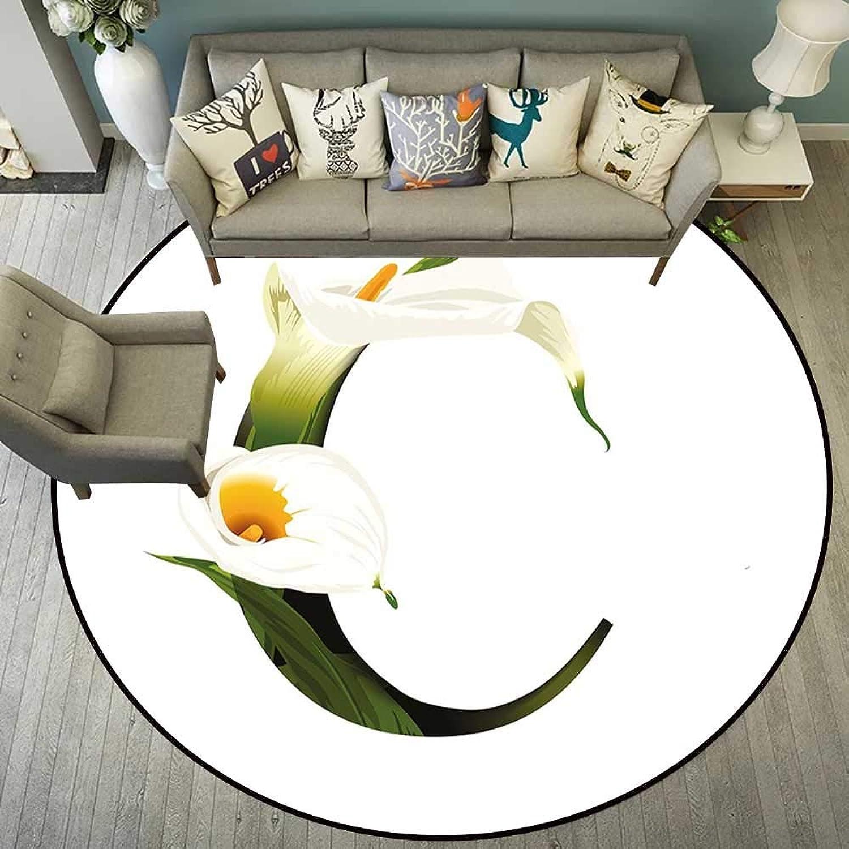 Circularity Floor mat Non Slip Round Indoor Floor mat Entrance Circle Floor mat for Office Chair Wood Floor Circle Floor mat Office Round mat for Living Room Pattern 5'7  Diameter