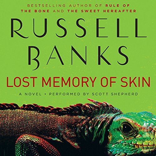 Lost Memory of Skin audiobook cover art