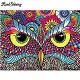 ZXXGA Cuadrado Completo 5D DIY Diamante Bordado Color águila Diamante Pintura Punto de Cruz Rhinestone Mosaico decoración del hogar Sin Marco 50x40cm