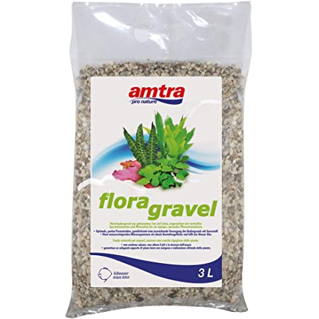 Amtra Flora Grave