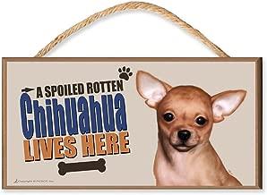 DGS Originals Chihuahua A Spoiled Rotten Chihuahua Lives Here (v3) Dog Sign