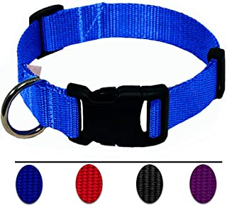 AEDILYS Adjustable Collar Classic Colors