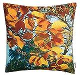 Brandsseller Outdoor Garten Kissen Dekokissen Motivkissen Herbst Schmutz und Wasserabweisend mit...