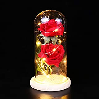 OSALADI Rose led Light Glass Dome Lamp Enchanted Rose Valentine Party Wedding Gift (Battery not Included)